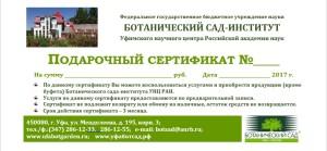 сертификат БСИ